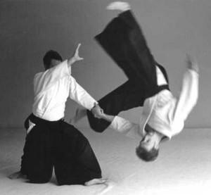aikido2-300x277